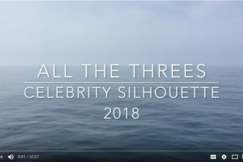 Celebrity Silhouette Video